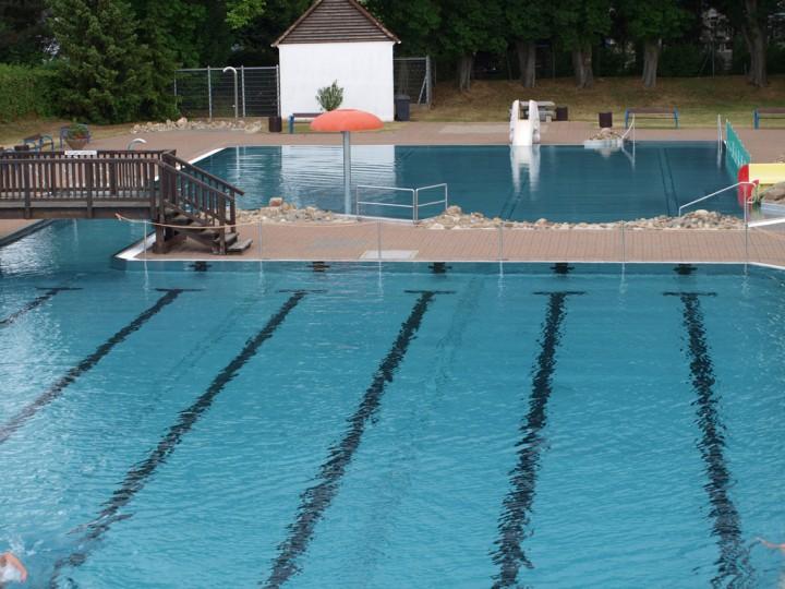 Vereinsmeisterschaften im Schwimmen für alle Abteilungen